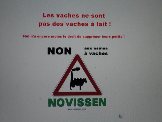 Novissen